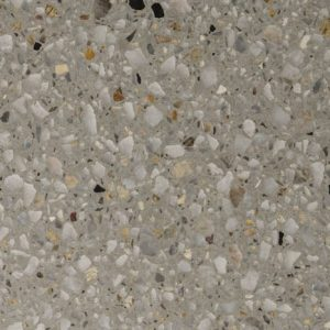 Coral Grey Polished